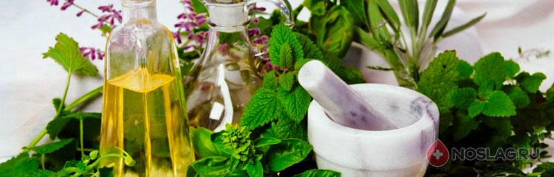 Травы очищающие организм от шлаков и токсинов 18-5