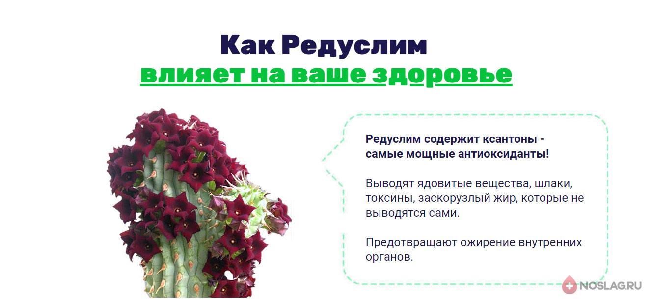 Аналоги Редуслим Reduslim1-1